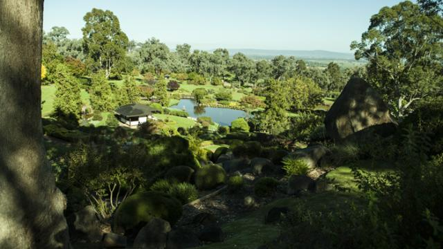 Japanese Peace Garden by Lachlan Mitchell